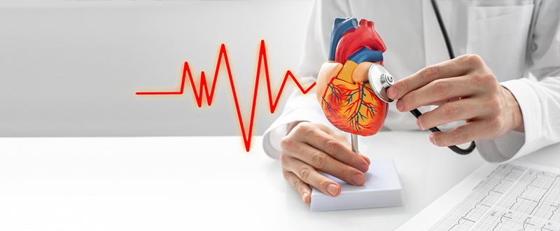 What are Vascular Disease and High Blood Pressure