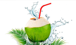 Including Coconut Water in Our Diet